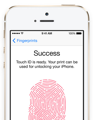 touch-id-screenshot-v1-458x590